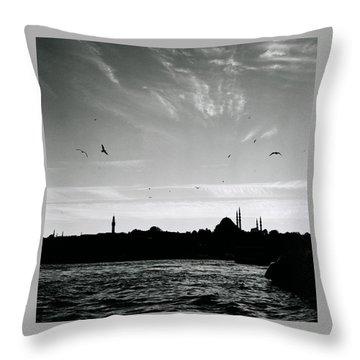 Birds Over The Golden Horn Throw Pillow