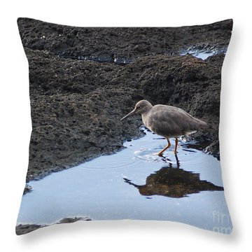 Bird's Reflection Throw Pillow by Belinda Greb