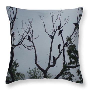 Throw Pillow featuring the photograph Birds by Fortunate Findings Shirley Dickerson