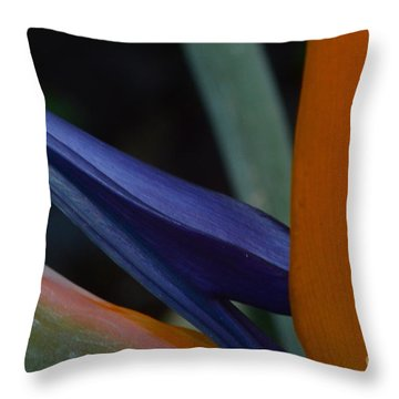 Bird's Tongue Throw Pillow by Tim Good