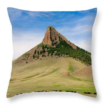 Roundup Throw Pillows