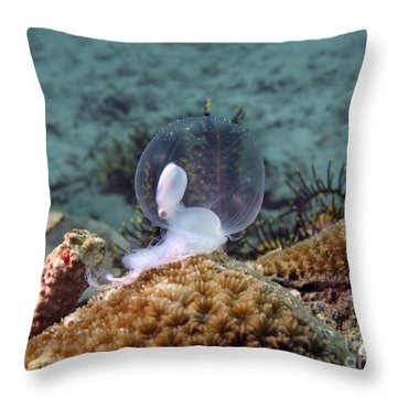 Birth Of Marine Cuttlefish Throw Pillow by Sergey Lukashin