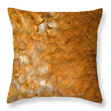 Biscuit Basin Bacterial Mat Throw Pillow by Bruce Gourley