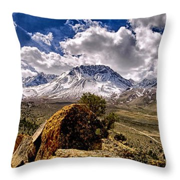 Bishop California Throw Pillow