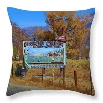 Throw Pillow featuring the photograph Bishop Creek To The Left by Viktor Savchenko