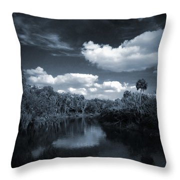 Bishop Harbor Throw Pillow by Phil Penne