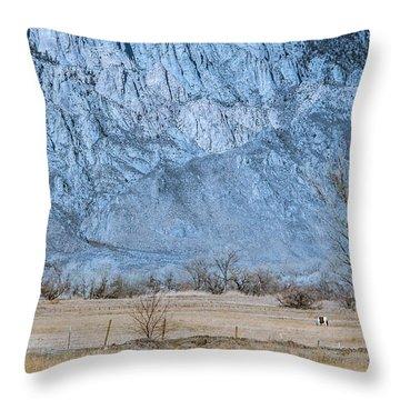 Bishop Paint Throw Pillow by Jan Davies