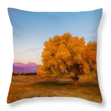Bishop Sunrise Throw Pillow