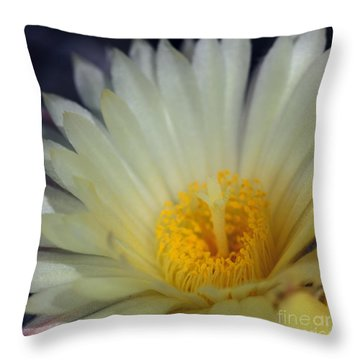 Bishop's Cap IIi Throw Pillow
