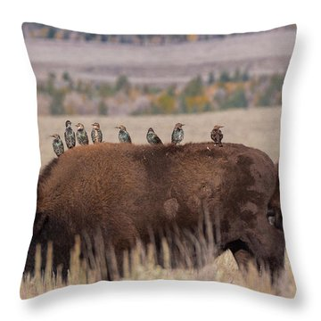 Bison And Buddies Throw Pillow