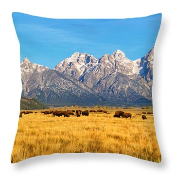 Bison Beneath The Tetons Limited Edition Panorama Throw Pillow
