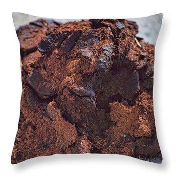Bison Dung - The Pillow Throw Pillow