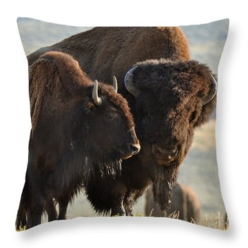 Bison Friends Throw Pillow by Bruce Gourley