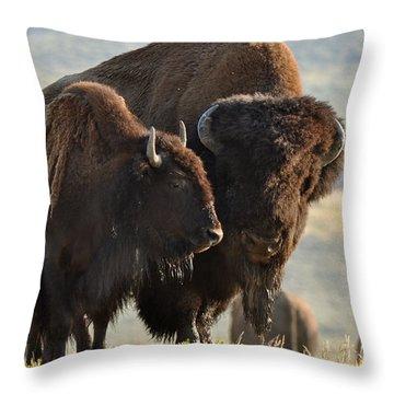 Bison Friends Throw Pillow