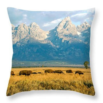 Bison Herd Throw Pillow