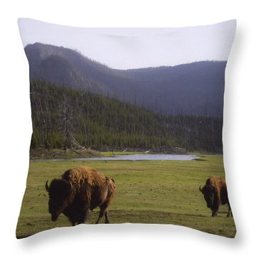 Montana Yellowstone Np Throw Pillow