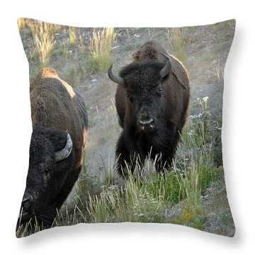 Bison On The Run Throw Pillow by Bruce Gourley