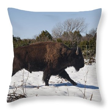 Bison Running In Snow Throw Pillow
