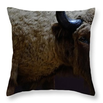 Bison Stuffed Throw Pillow