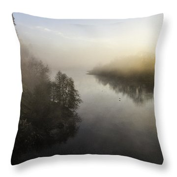 Bitter Cold-color Throw Pillow