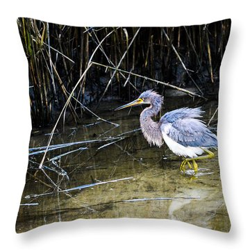 Bittern At Dusk  Throw Pillow