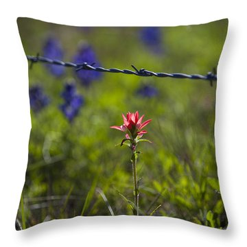 Bittersweet Imagery Throw Pillow