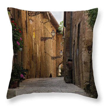 Black Alley Cat Throw Pillow
