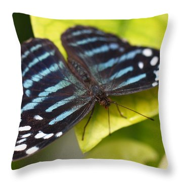 Black And Blue Throw Pillow