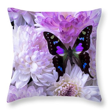 Black And Purple Butterfly On Mums Throw Pillow