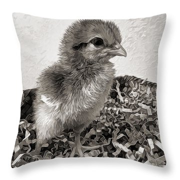 Black And White Baby Chicken Throw Pillow