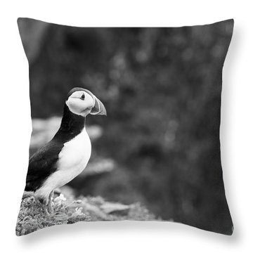 Black And White Black And White Bird Throw Pillow by Anne Gilbert