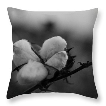 Black And White Boll Throw Pillow