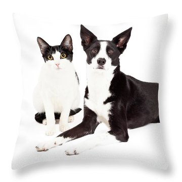Black And White Cat And Dog Throw Pillow by Susan Schmitz