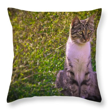 Black And White Cat In The Bush Throw Pillow