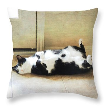 Throw Pillow featuring the photograph Black And White Cat Reclining by Jayne Wilson