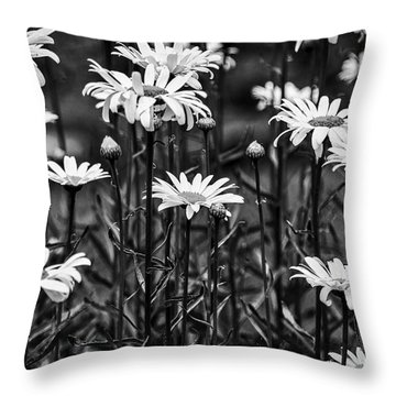 Black And White Daisies Throw Pillow by Mary Carol Story