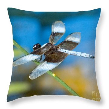 Throw Pillow featuring the photograph Black And White Dragonfly by Mae Wertz