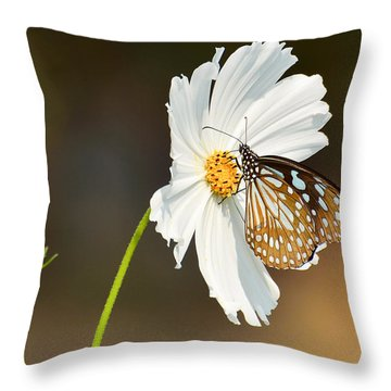 Black And White Throw Pillow by Fotosas Photography