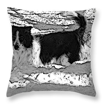 Black And White In Snow Throw Pillow by Michael Porchik