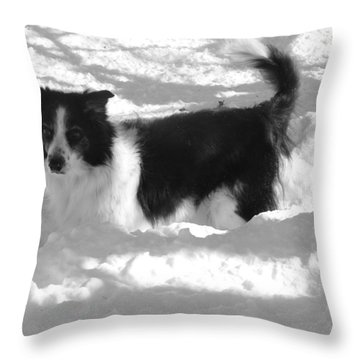 Throw Pillow featuring the photograph Black And White In The Snow by Michael Porchik