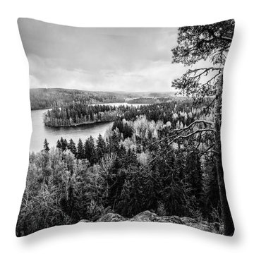 Black And White Lake View Throw Pillow