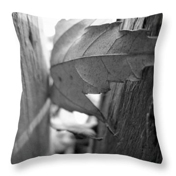 Black And White Leaf At Fort Watauga Throw Pillow