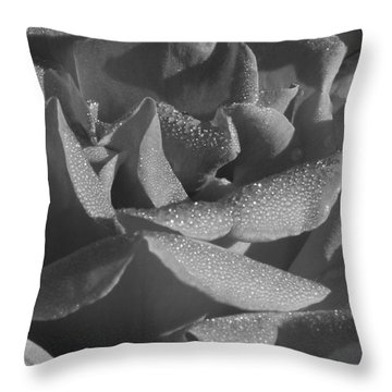 Black And White Morning Rose Throw Pillow