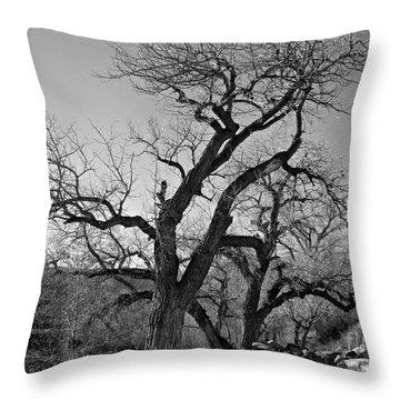 Black And White Oak Throw Pillow