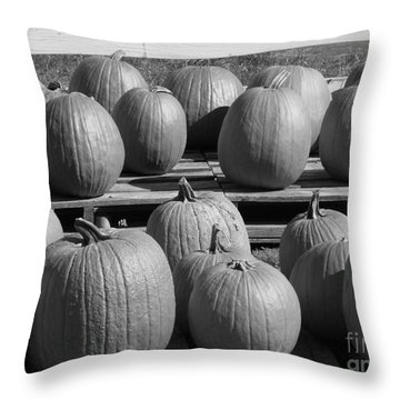 Black And White Pumpkins Throw Pillow by Erick Schmidt