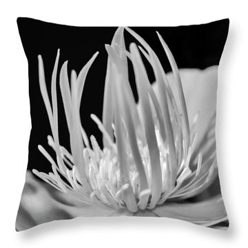 Black And White Universe Throw Pillow