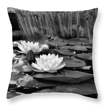 Throw Pillow featuring the photograph Black And White Version by John S