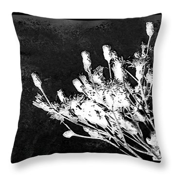 Throw Pillow featuring the photograph Black And White Wildflower by Shawna Rowe