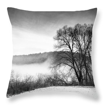 Black And White Winter Landscape With Trees Throw Pillow by Matthias Hauser