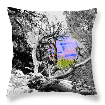 Black And White With Color Throw Pillow